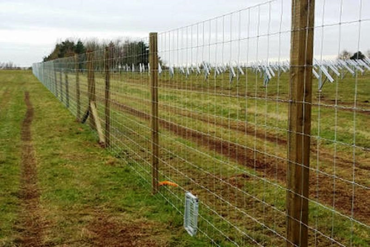 50% subsidy to set up solar power fence - Call for farmers!