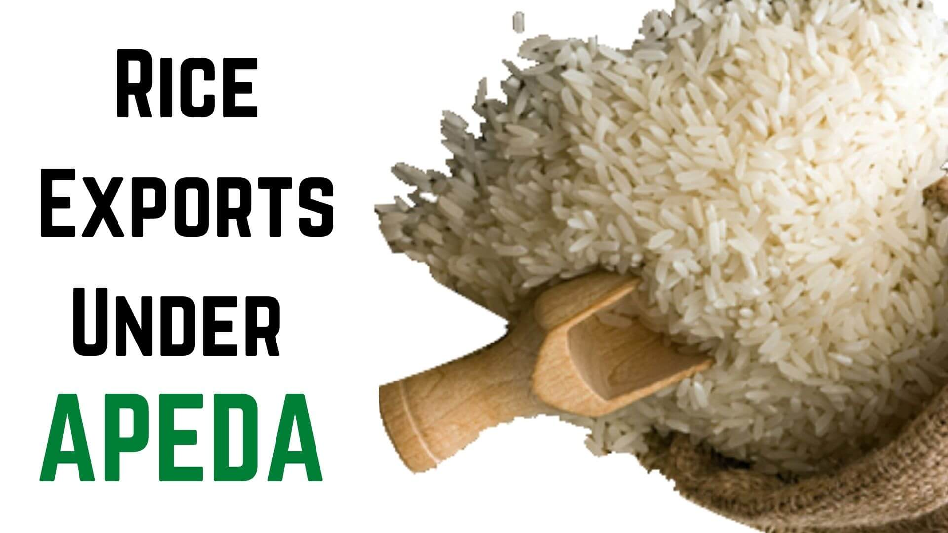 Rice exports from Varanasi to Qatar for the first time -APEDA proud!