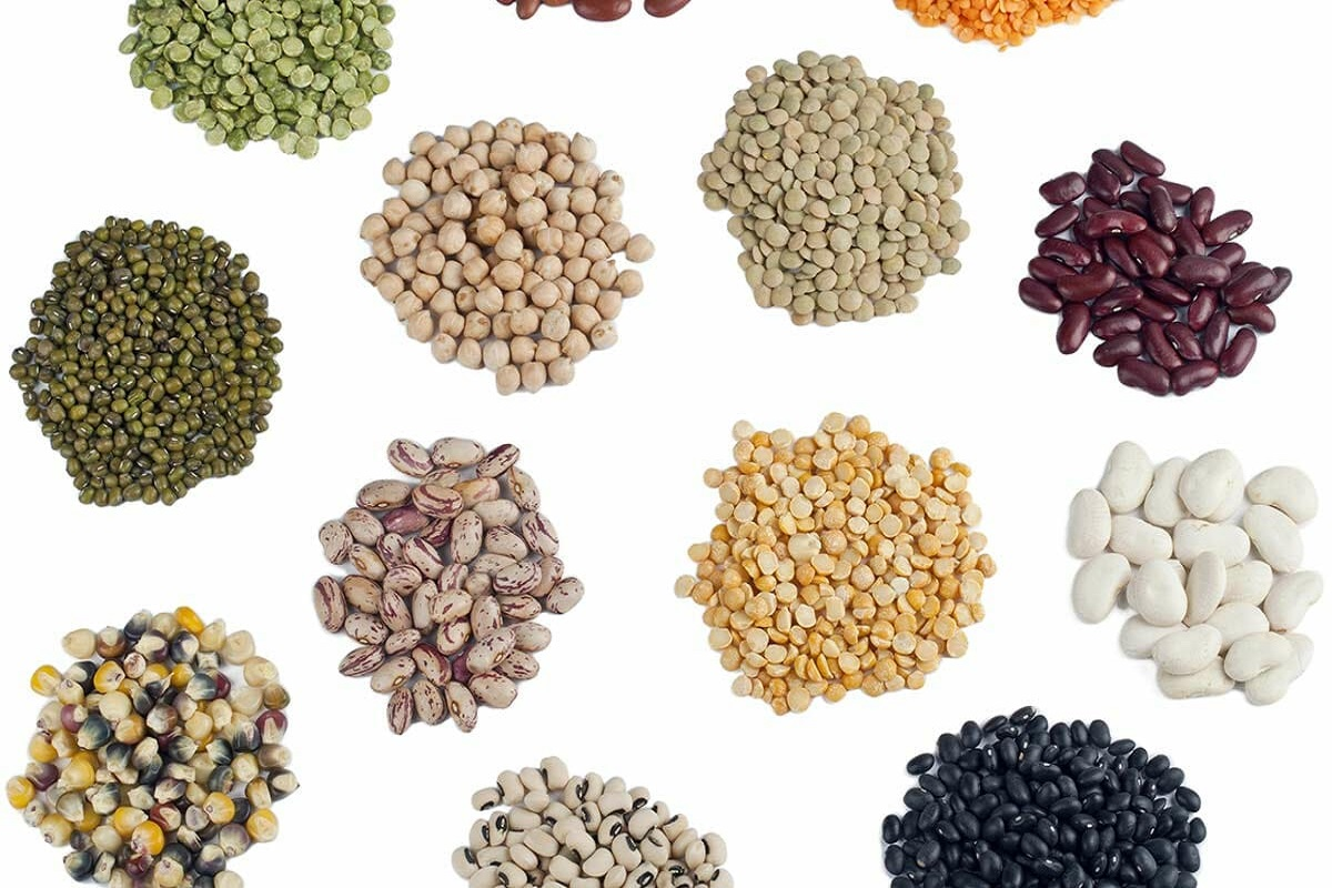 Sale of seeds at 50% subsidy - Department of Agriculture instruction!
