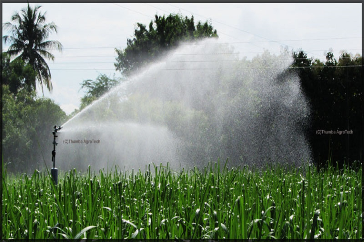 Which crops need when & how much water?