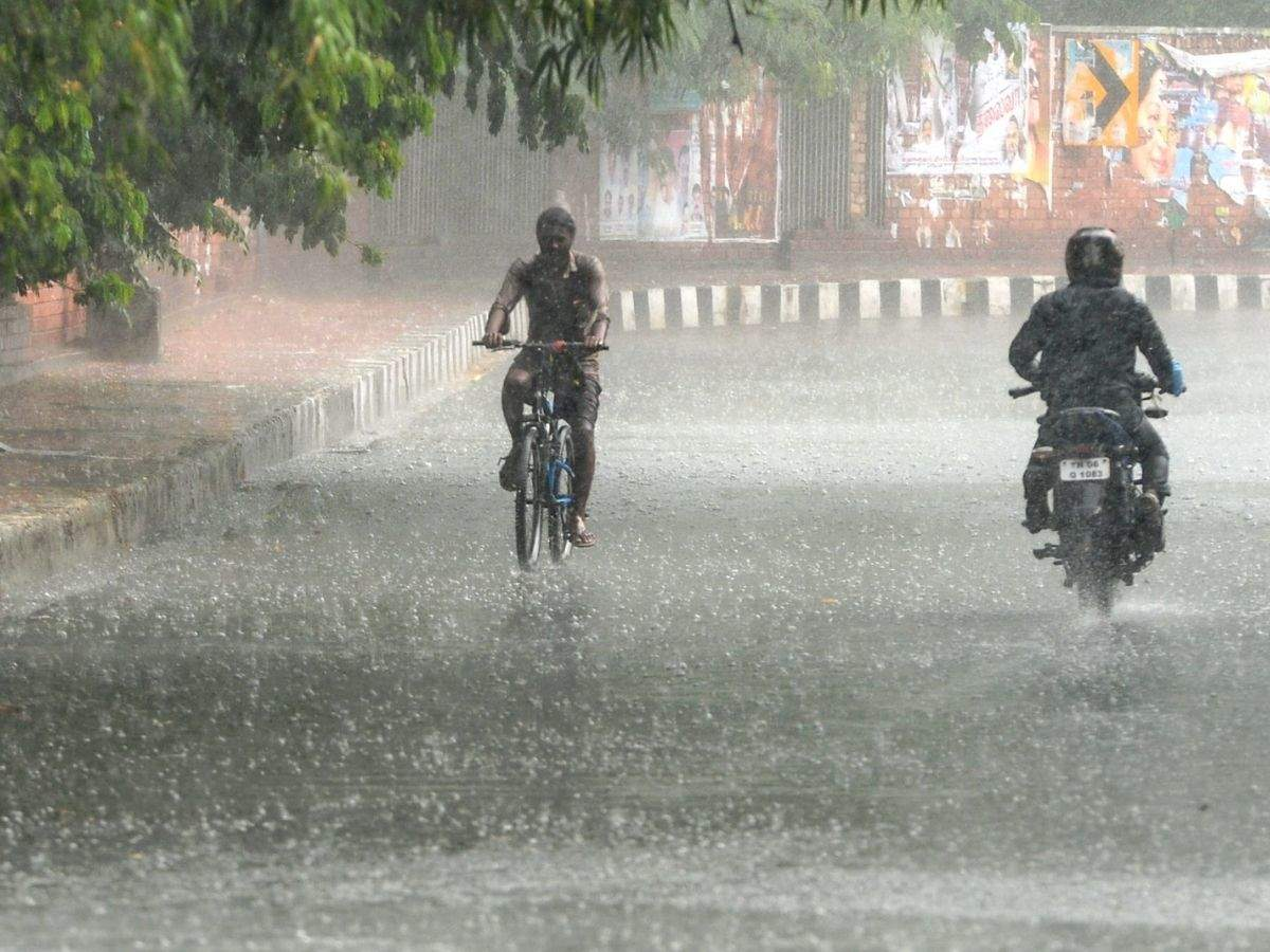 In which districts will it rain heavily? Full details inside!