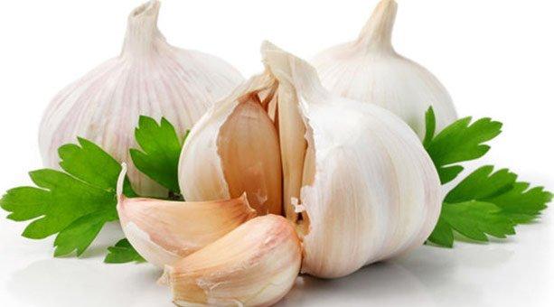 Garlic Health Benefits.