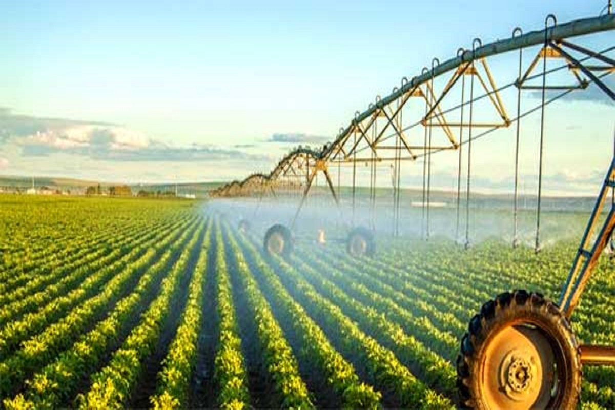 Rs 40,000 subsidy for drip irrigation for horticultural crops!
