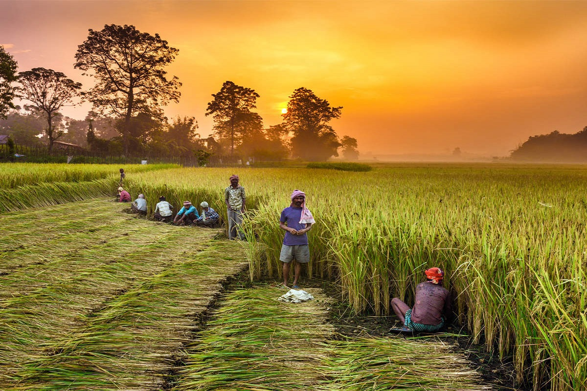 Jackpot is going to hit farmers- 1 lakh crore rupees subsidy!