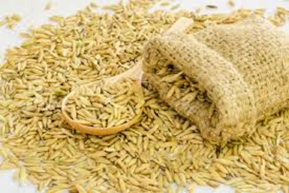 Indirect paddy auction at regulated outlets - Call for farmers!