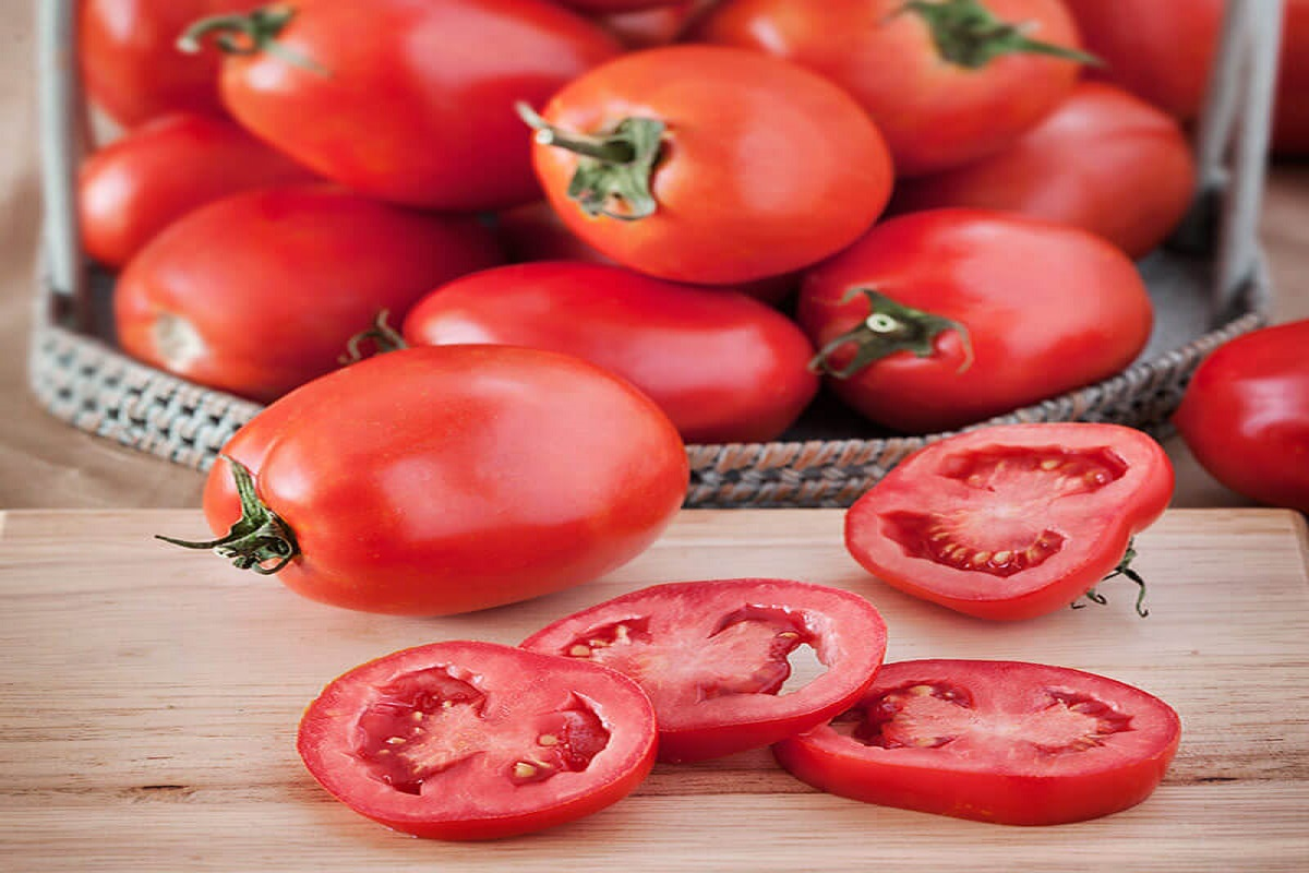 Tomato Cultivation- What are the natural remedies for pest control?