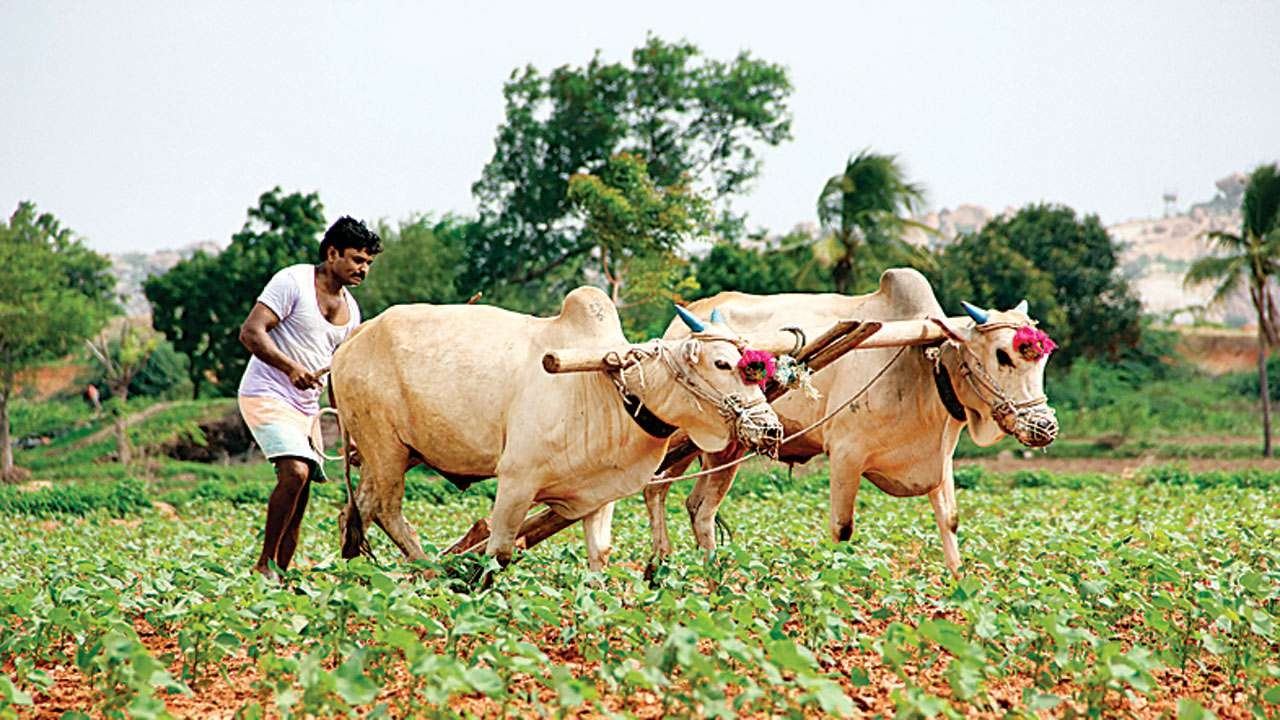 Rs 2,000 for 45 lakh farmers