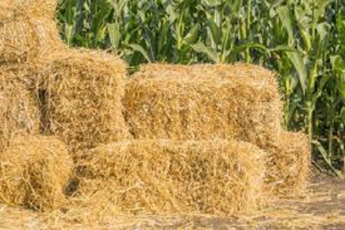 Straw sales outrage - Farmers happy!