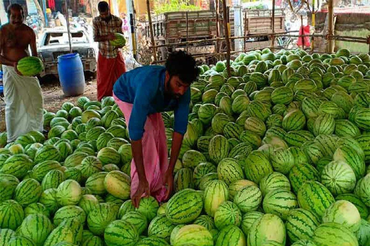 Watermelon sales