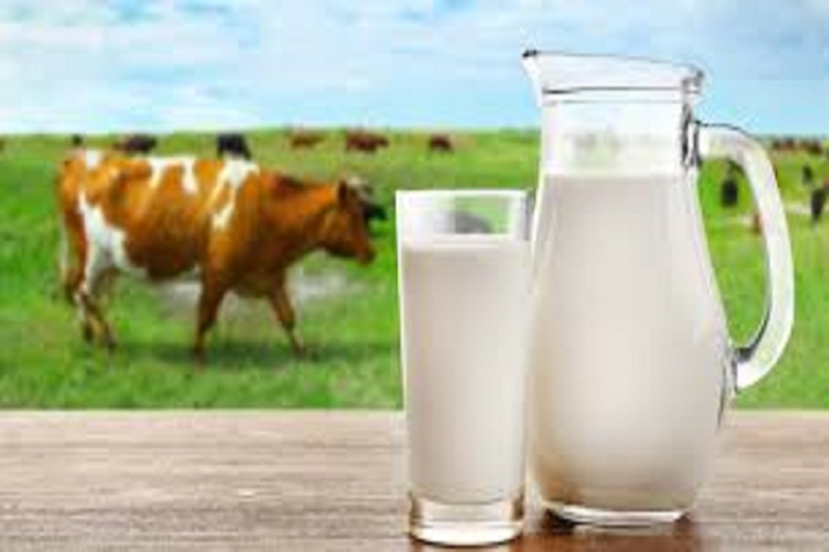 Impact of summer milk production- What can be done to prevent it?