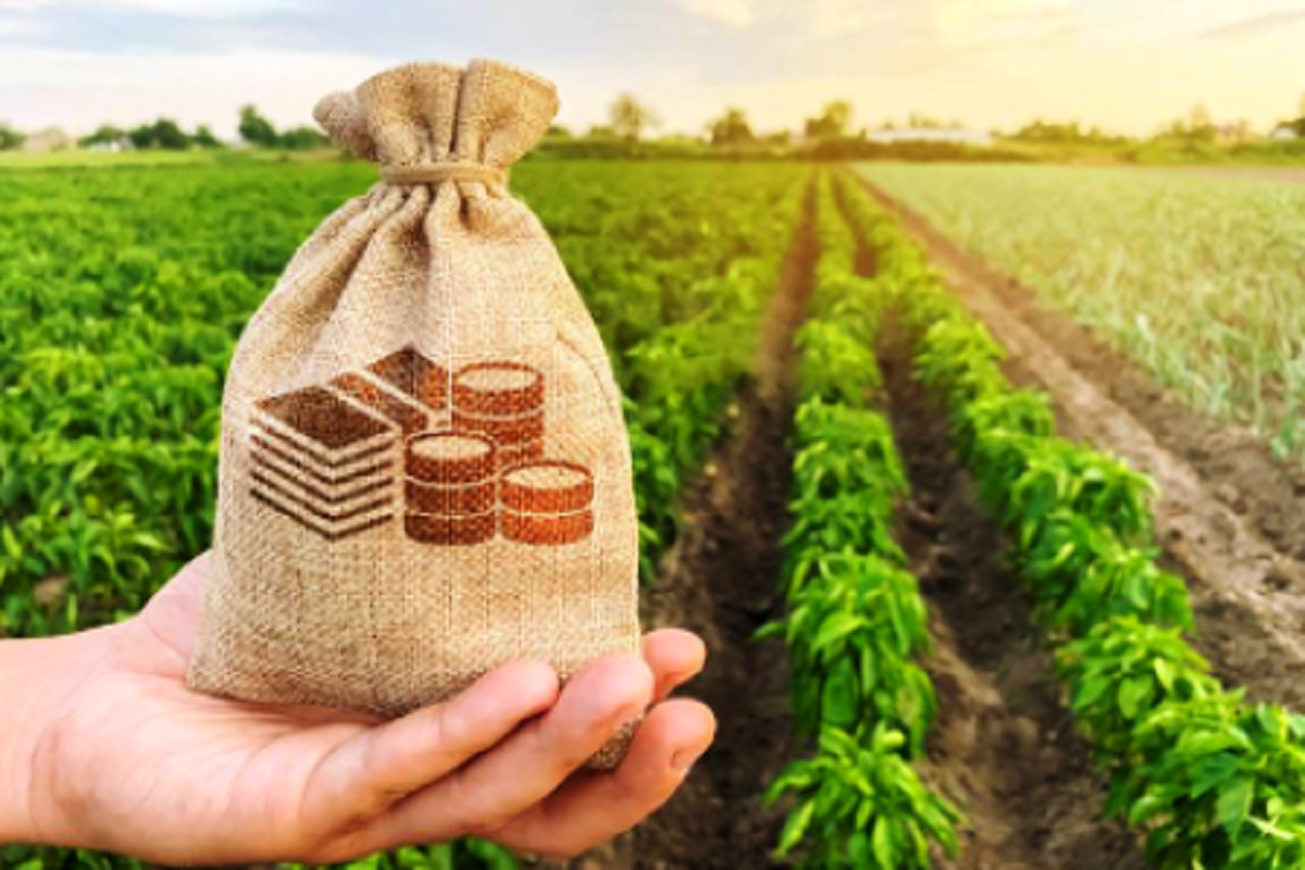 Interest free agricultural loan for farmers soon! Details inside!