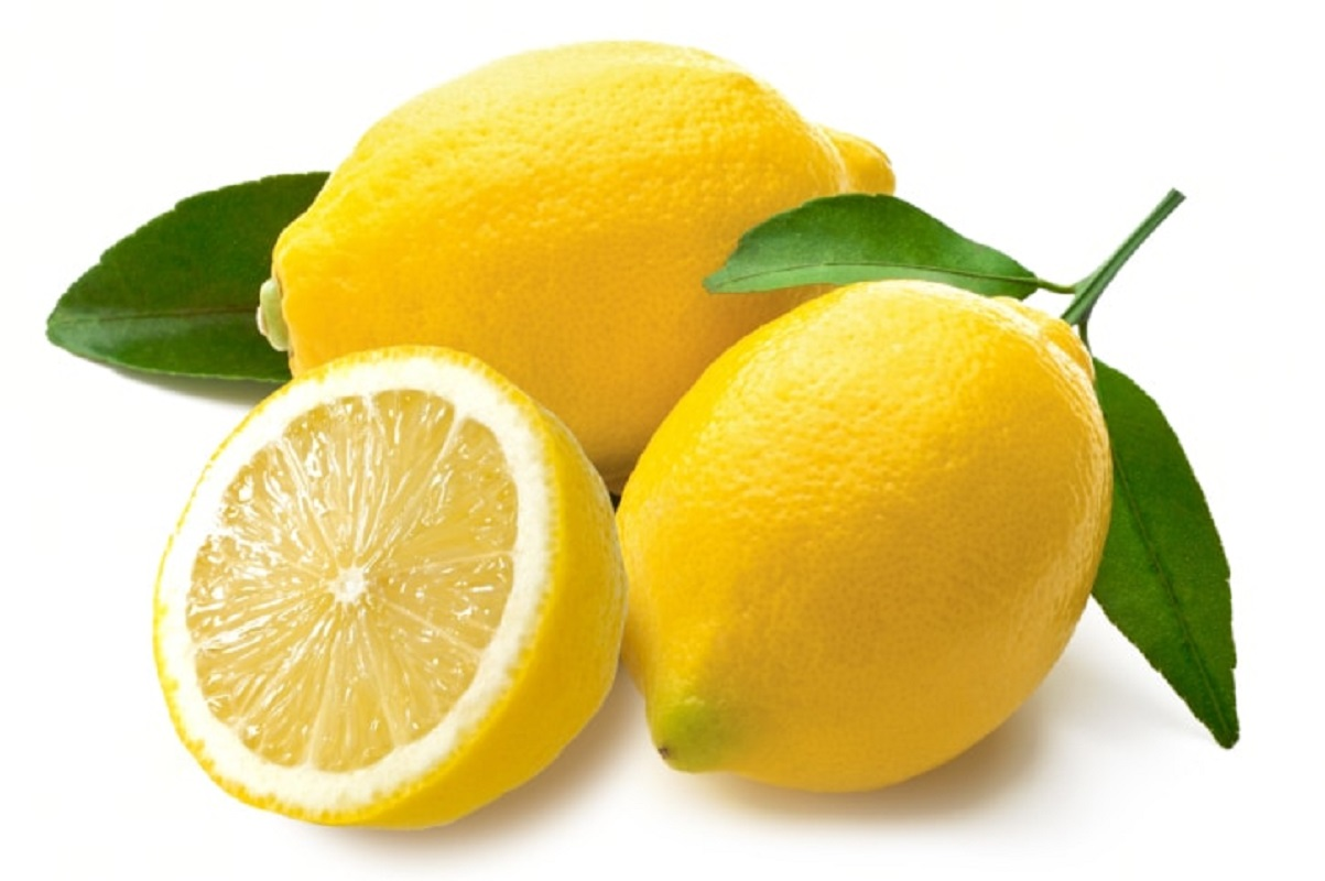 Which fruit is not eaten by rats? Super 10 Ideas to Cultivate!