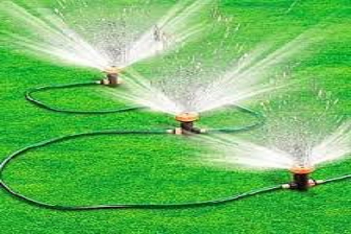 The solution to the problem of water stagnation - spray water irrigation!
