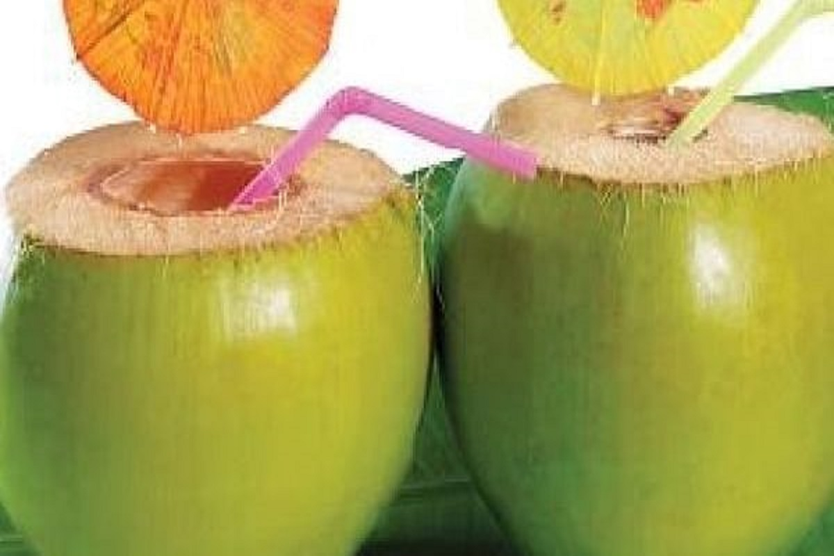 Tender Coconut prices rise - Farmers happy!