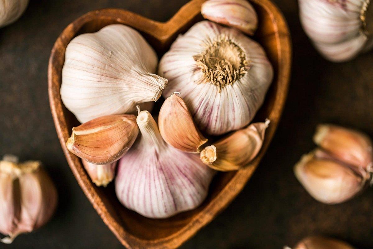 Medicinal mountain garlic - the process of maturation has begun!