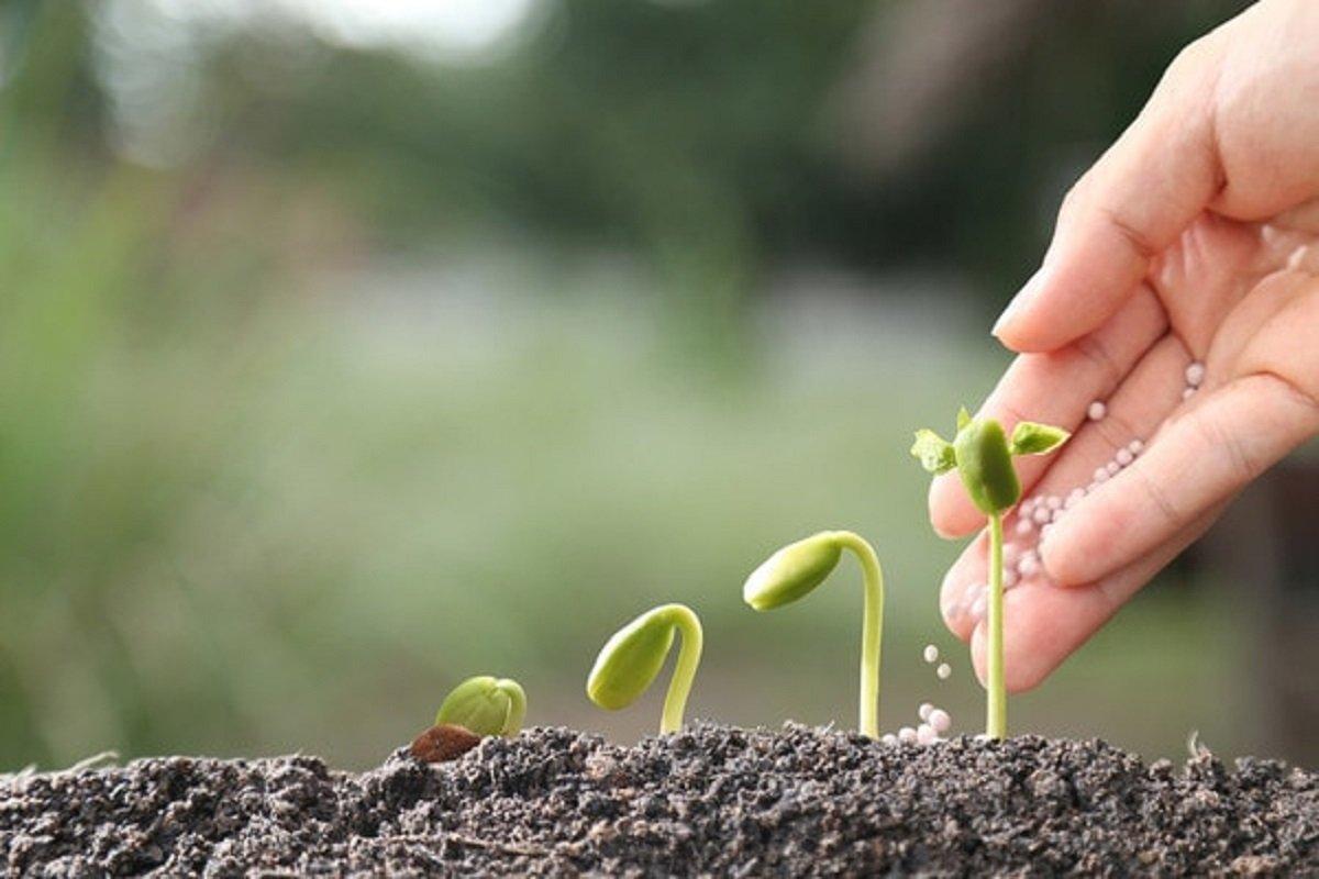 License revoked if counterfeit bio-pesticides are sold!