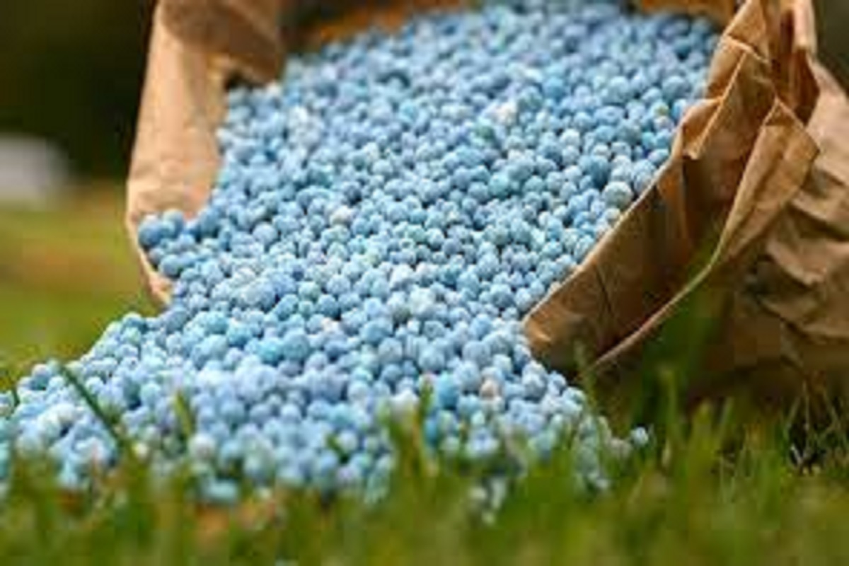 Necessary fertilizers are in stock - Information from the Associate Director of Agriculture!