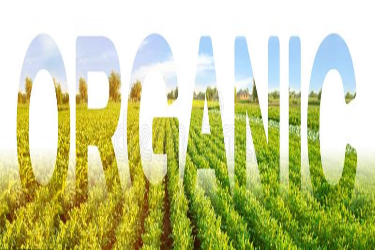 One day training on natural agriculture - Participate online!
