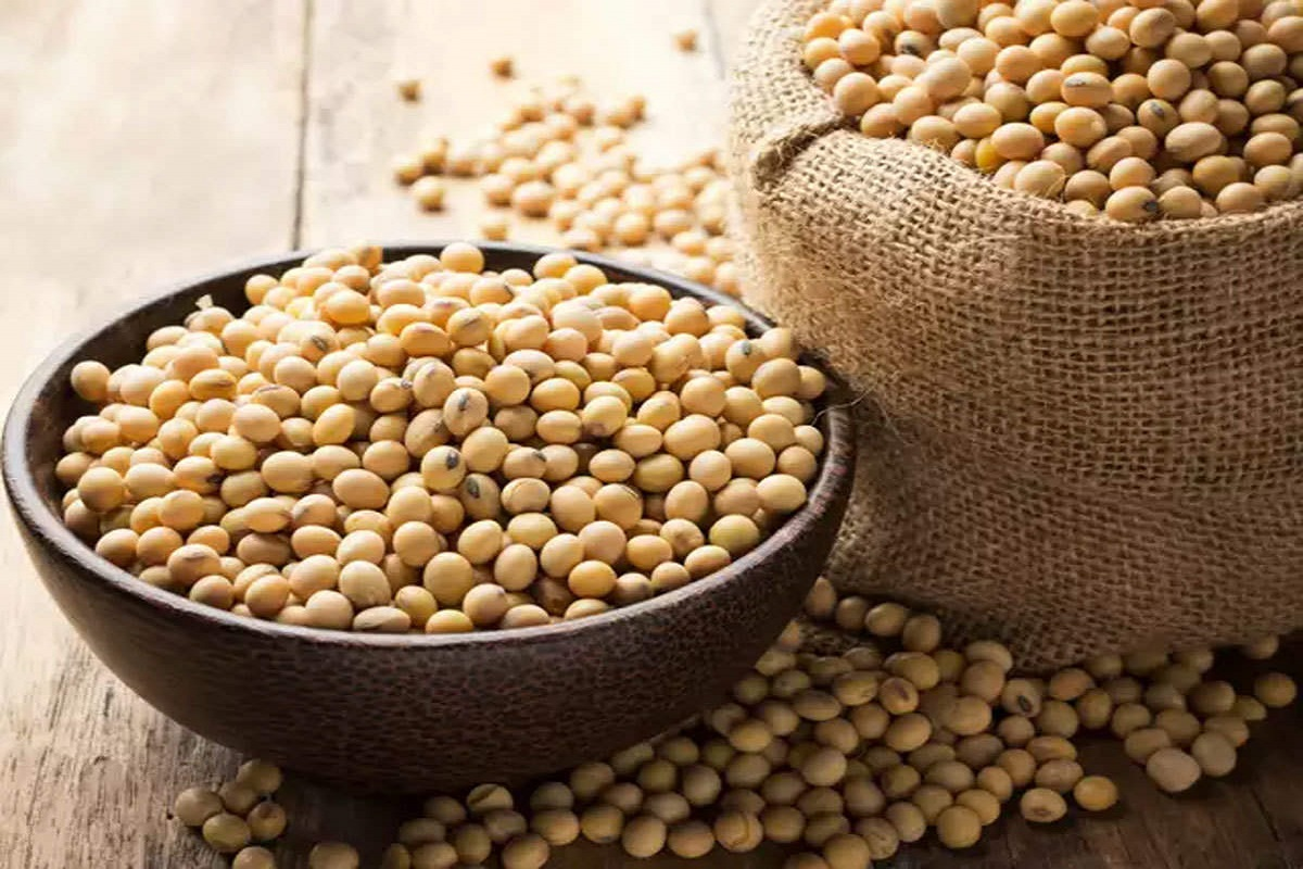 Scientists develop new high-yielding soybean variety!