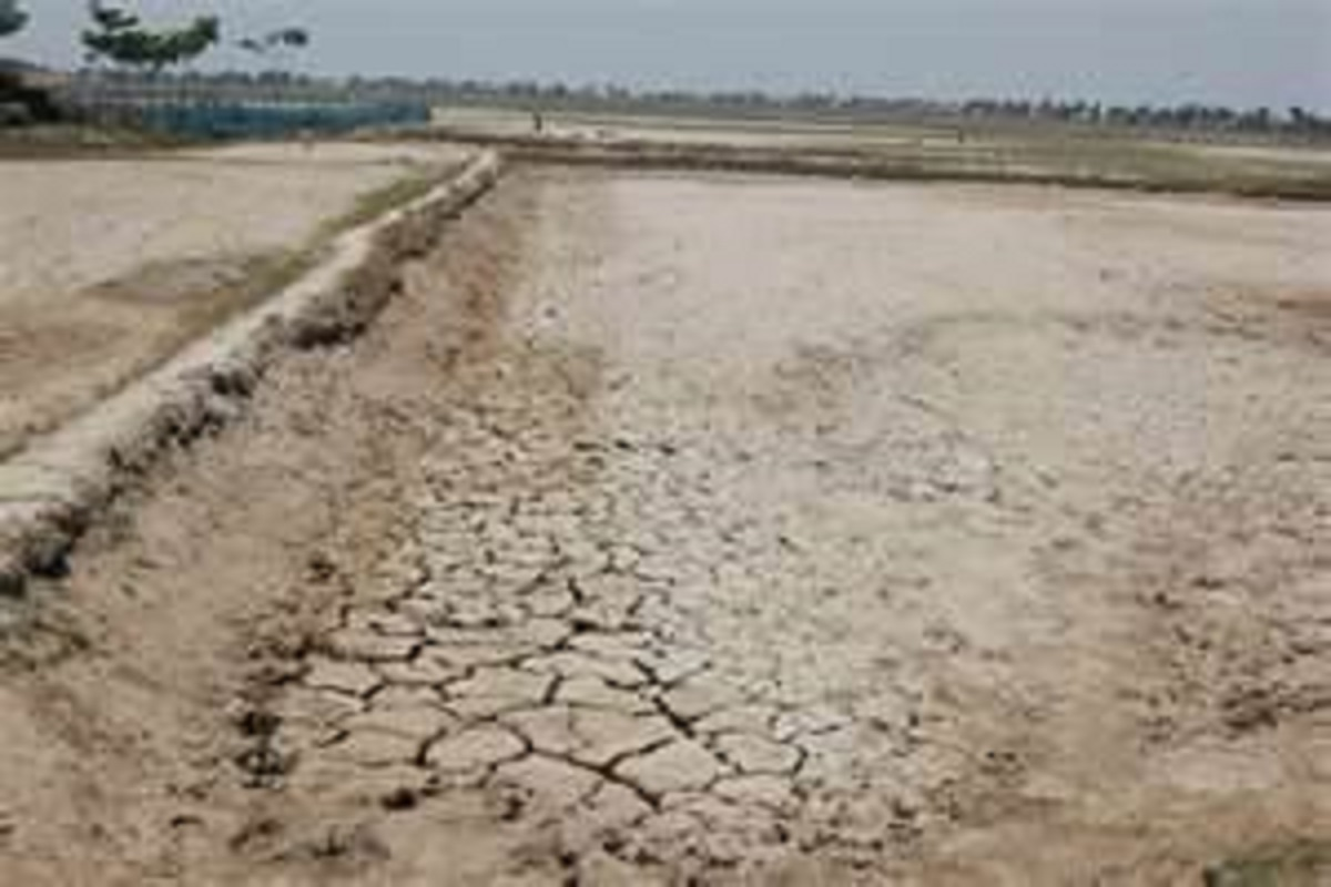 How to make dry land suitable for cultivation?
