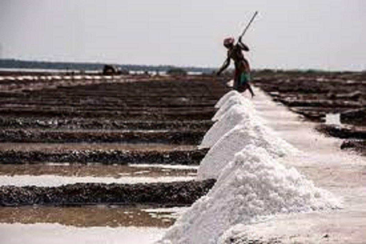 Salt production paralyzed by general freeze!