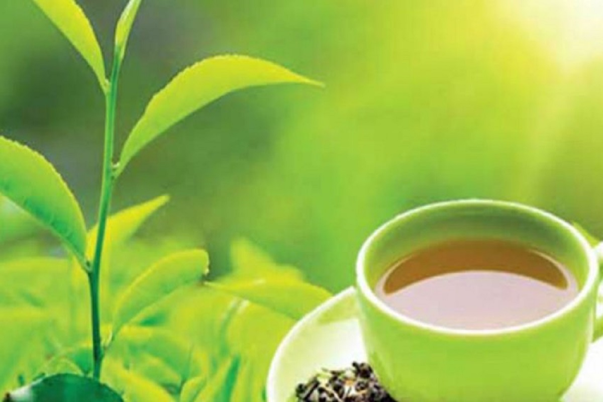 Intensification of corona eradication - Private tea factories ordered to close for 14 days!