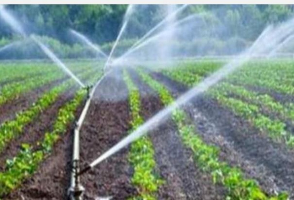 Drip Irrigation at 100% Subsidy- Call to Apply!