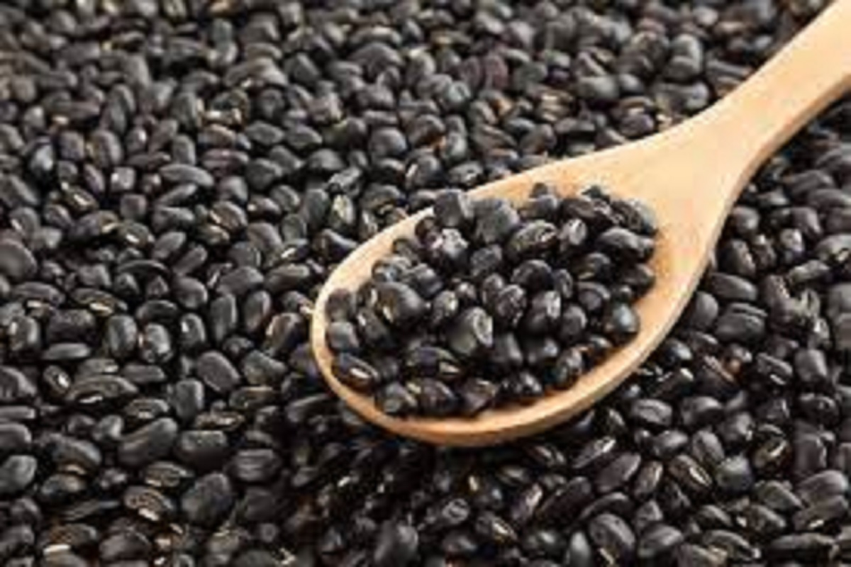 Urad dhal can be easily grown and profitable