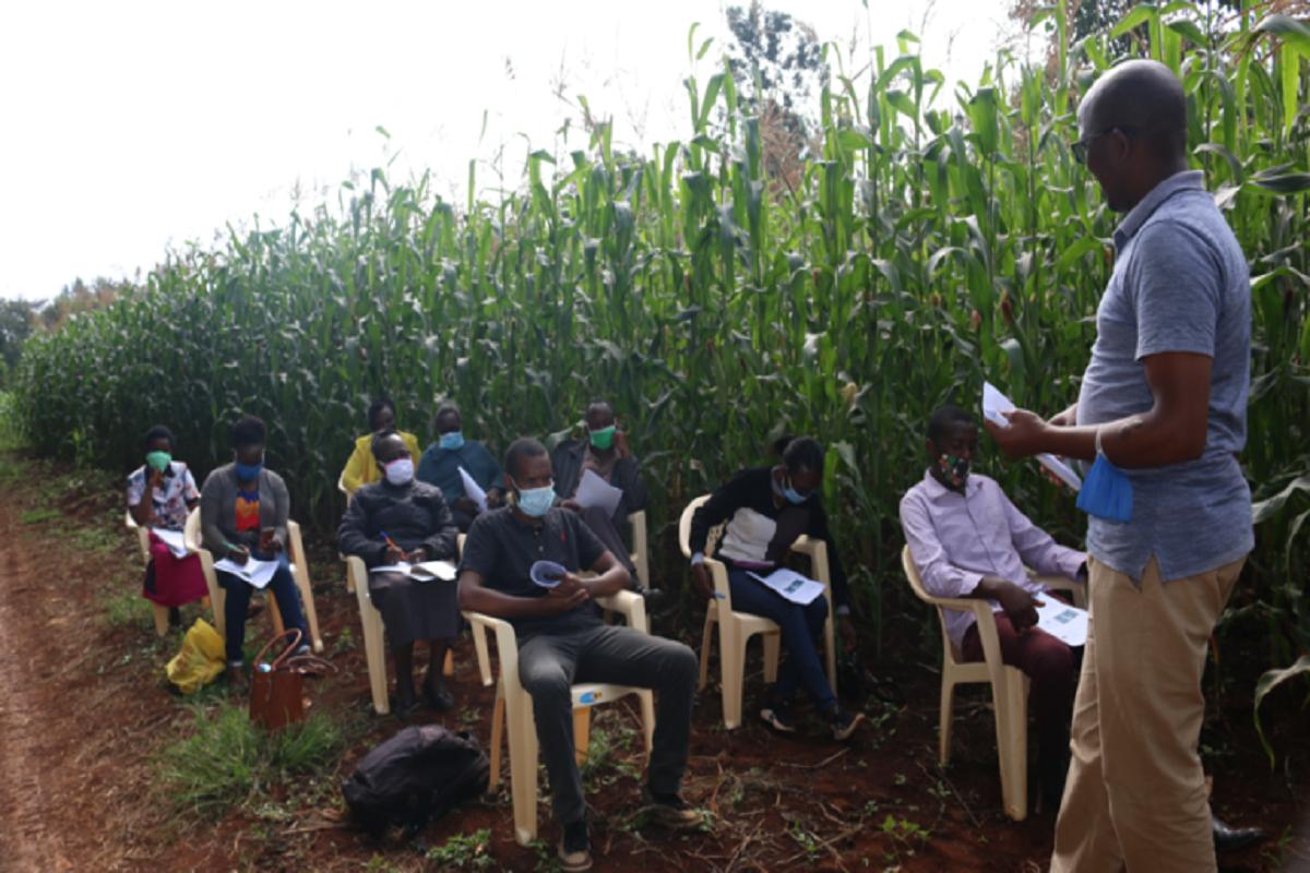 Training on seasonal crop cultivation and maintenance methods!