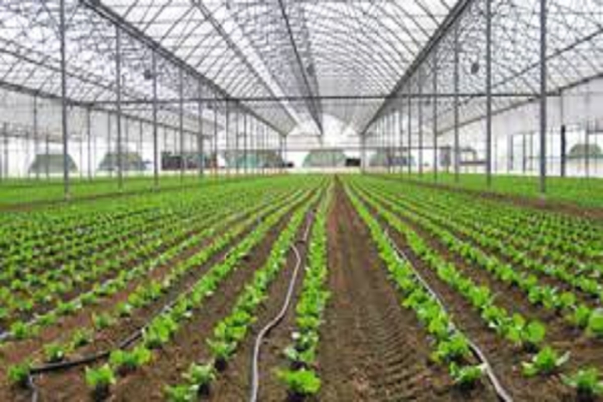 Subsidy for micro irrigation