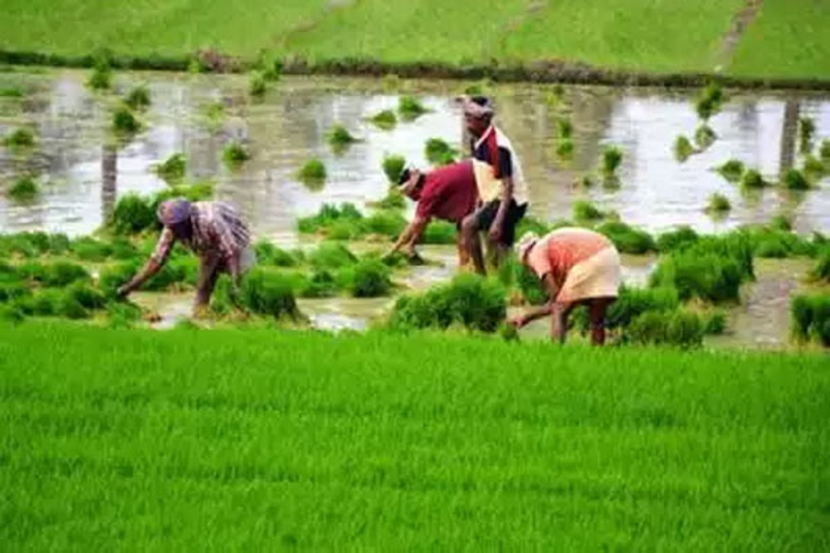 Independence Day Diamond Jubilee - 'Agricultural Semmel Award 2021 for Best Farmers!