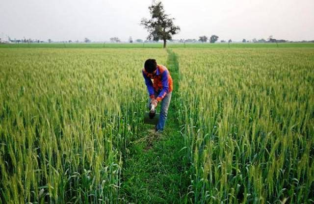 Micro-irrigation at 100% subsidy - Opportunity for small and marginal farmers!
