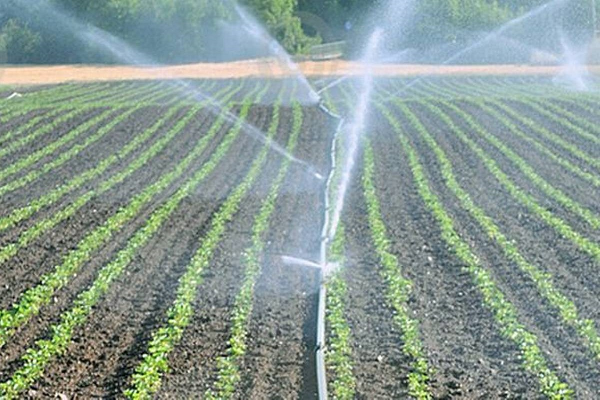 Micro Irrigation Facility for SC / ST Farmers at 100% Subsidy