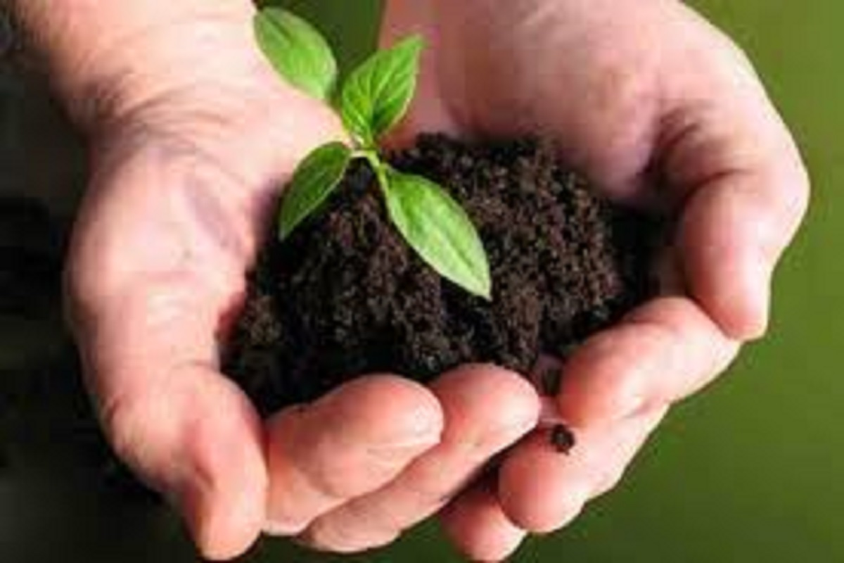 Bio-fertilizers at 50% subsidy to farmers!