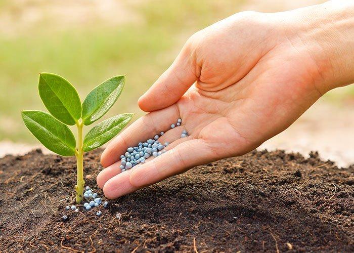 Fertilizers to Avoid in Organic Farming!