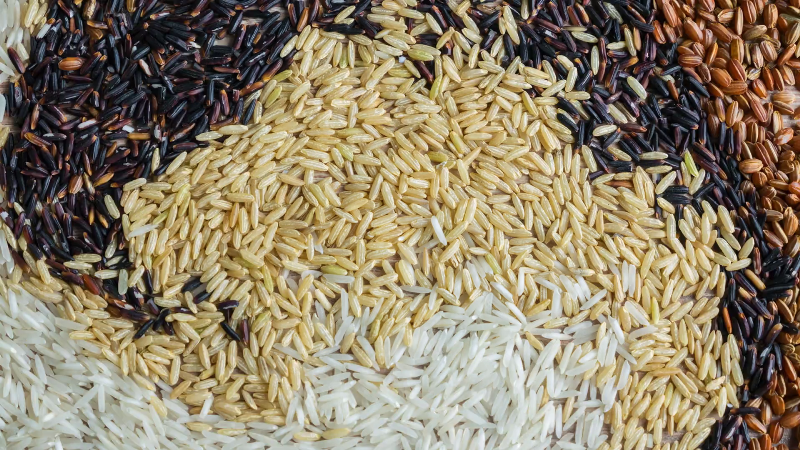 Traditional Varieties of Rice