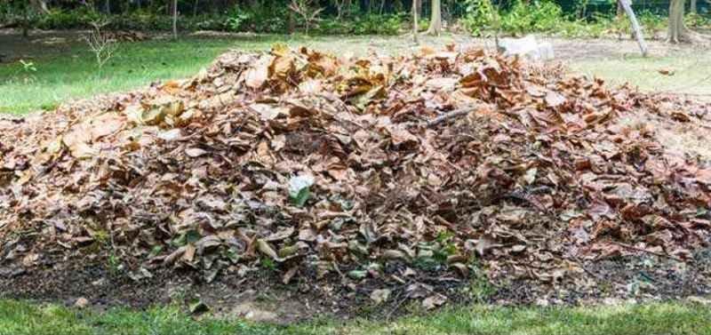 Agri Waste Compost