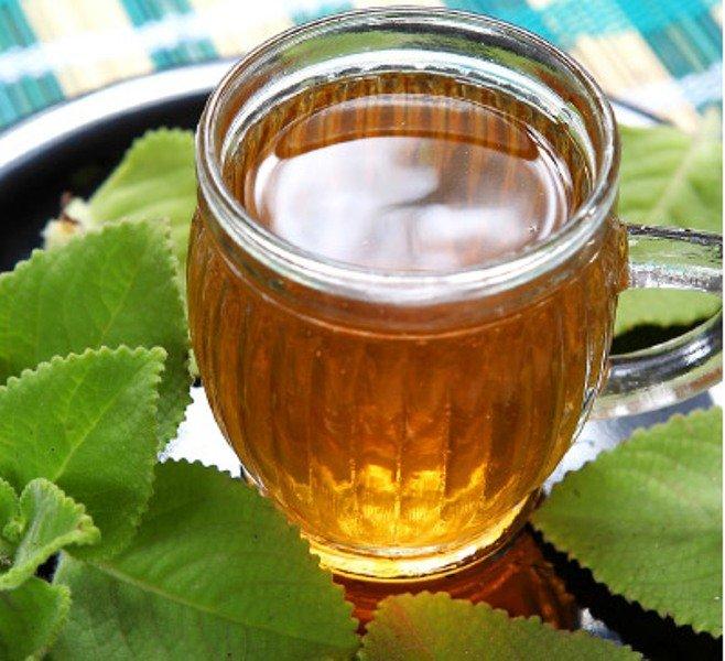 Karpuravalli Leaf