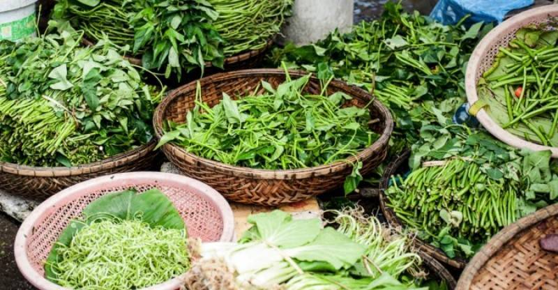 Healthy Leafys