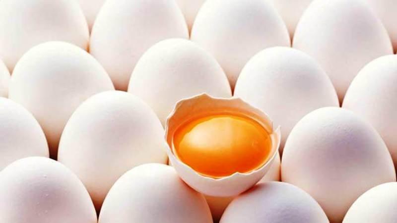 Namakkal Egg