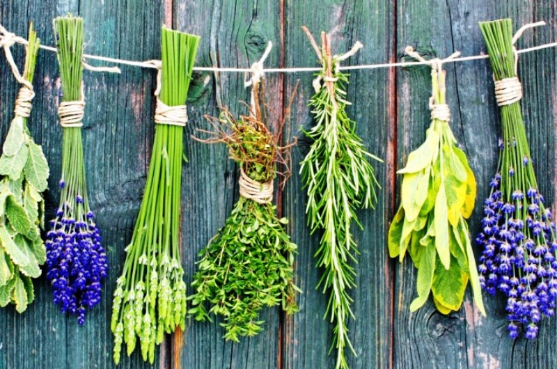 Herbs for Stress