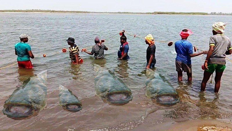 traditional method of fishing