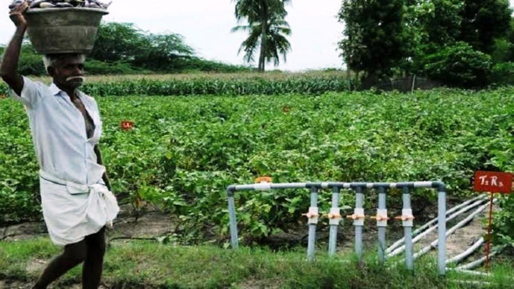 Subsidy for all the type of irrigation