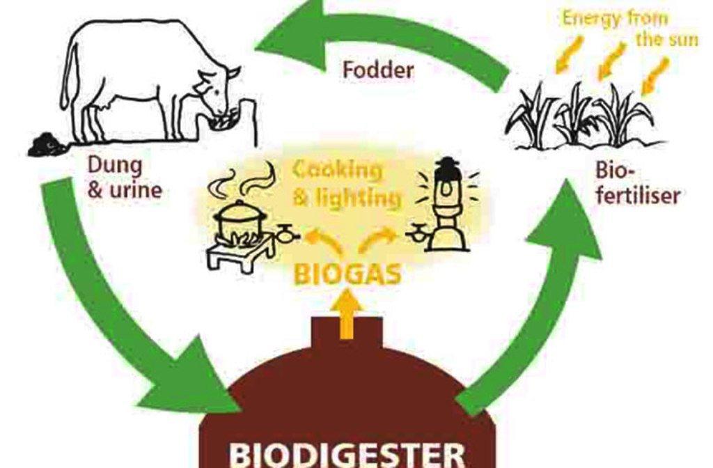 Bio Gas Production Process