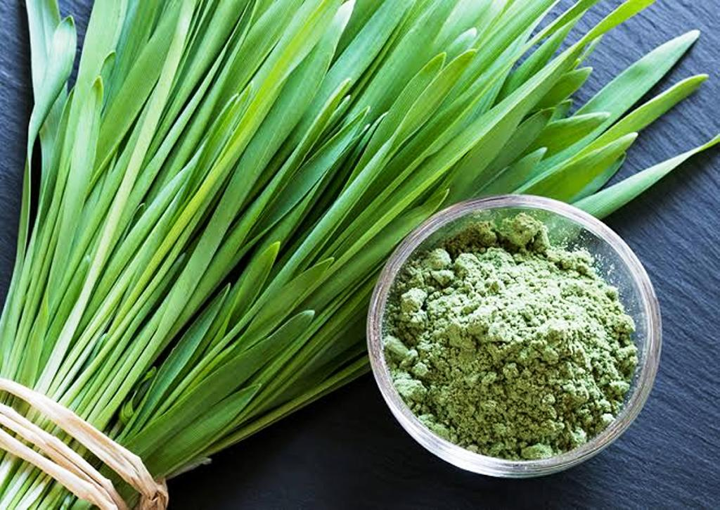 Healthy grass powder