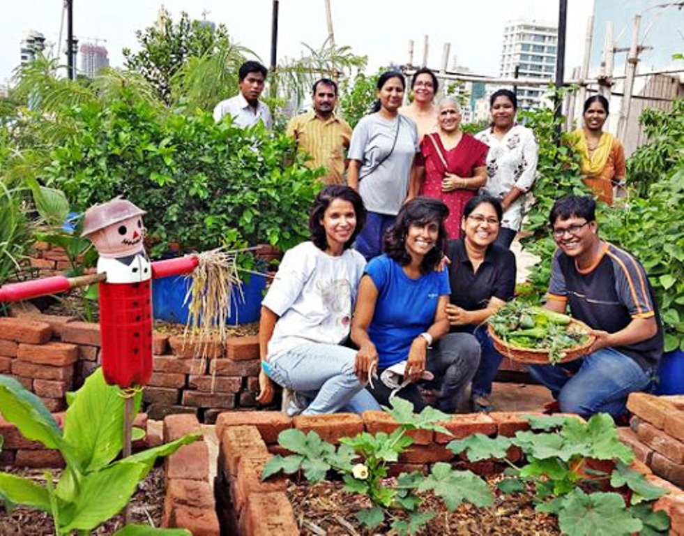 roof garden farmers