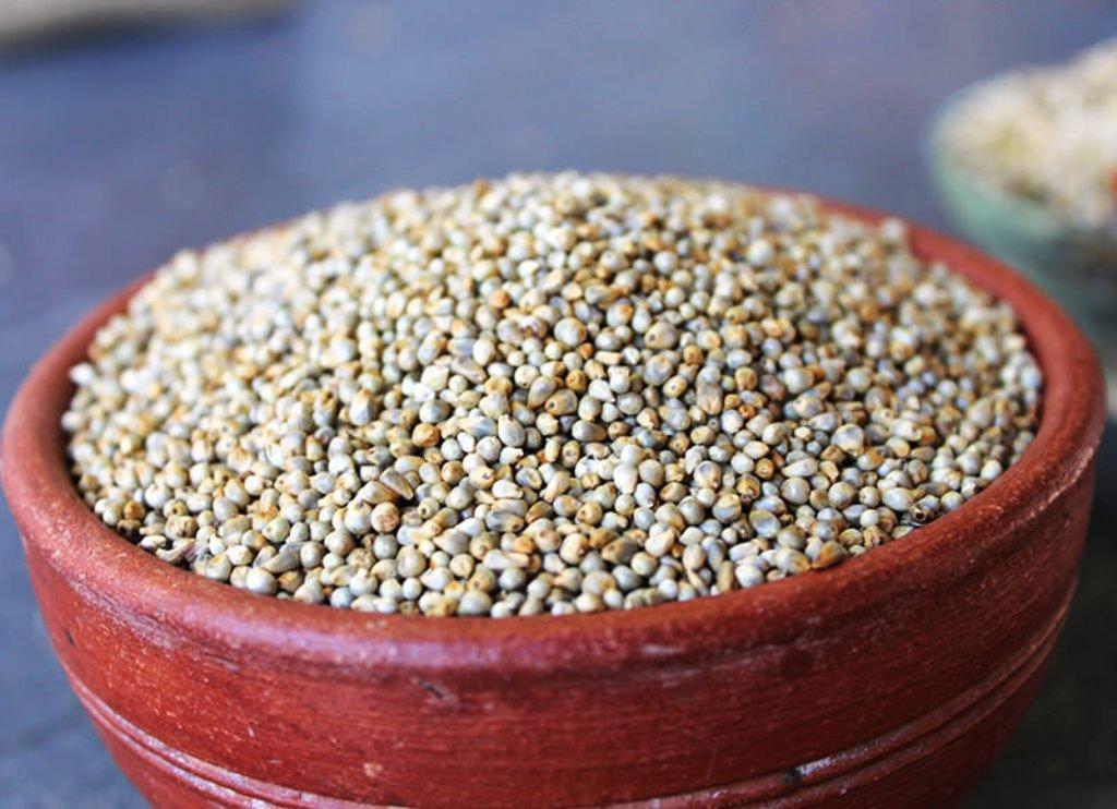 bajra crop in tamil ' Kampoo'