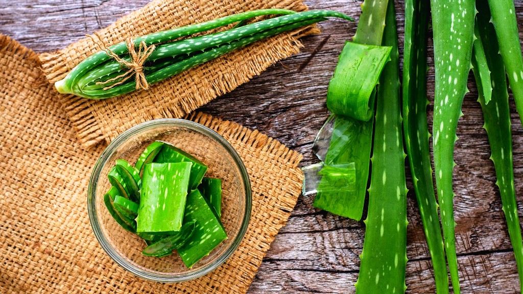 aloe vera home remedies for dry skin