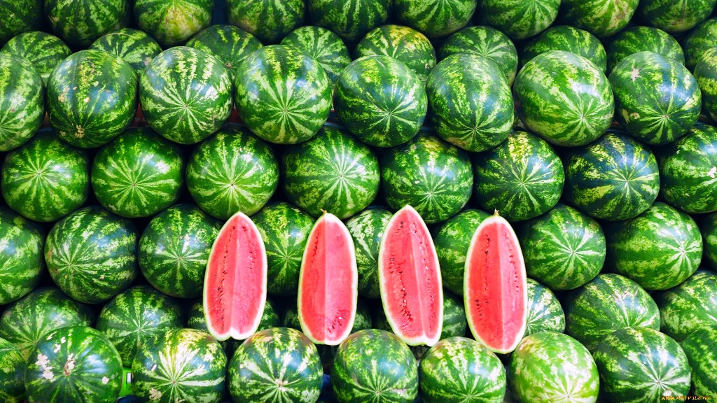 Know about watermelon