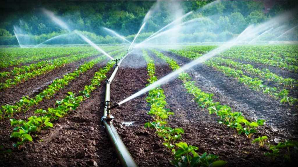 Subsidy for installation  drip irrigation